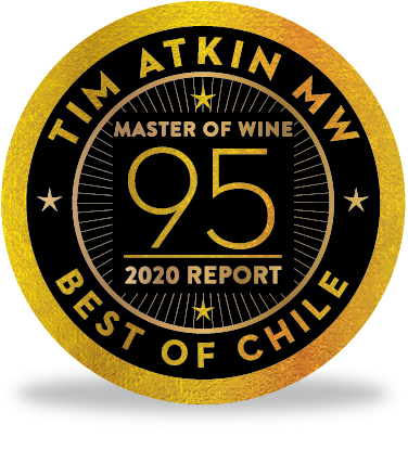 Master of wine Valdivieso
